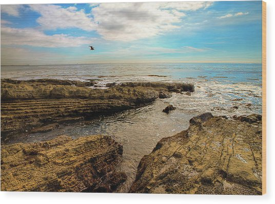 Cabrillo Beach San Pedro California Wood Print