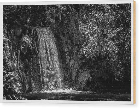 Cachoeira-parque Estadual-campos Do Jordao-sp Wood Print