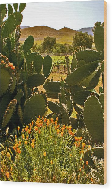 Cactus And Poppies Wood Print
