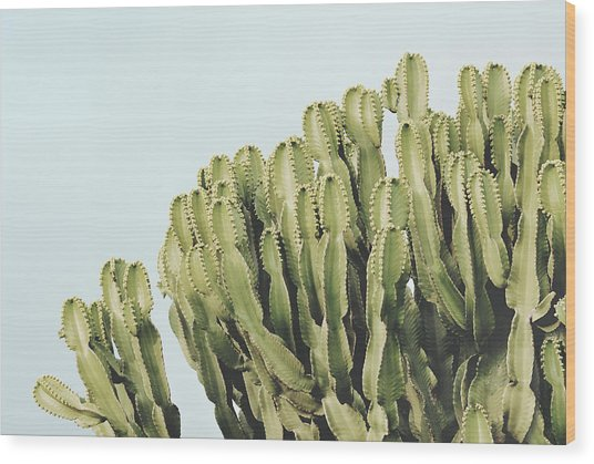 Cactus And Sky Vintage II Wood Print