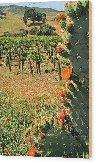 Cactus And Vines Wood Print