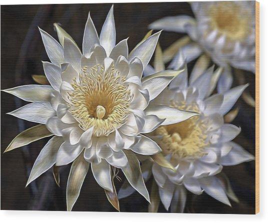 Cactus Art Wood Print