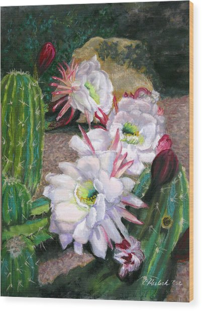 Cactus Flower Wood Print by Carole Haslock