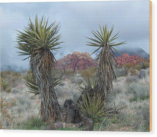 Cactus Frame Wood Print