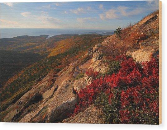 Cadillac Mountain Sunrise At Acadia National Park Wood Print