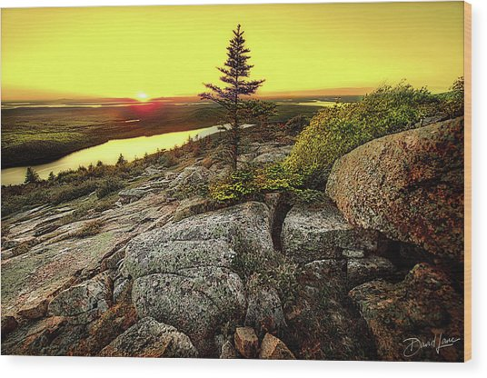 Wood Print featuring the photograph Cadillac Mountain Sunset by David A Lane