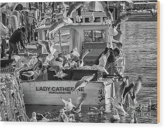 Cafe Lady Catherine Black And White Wood Print