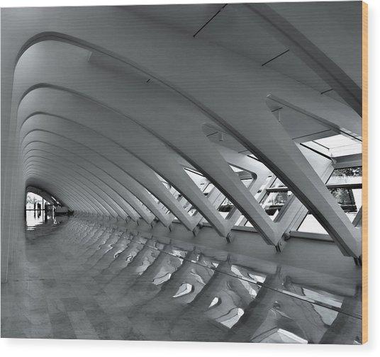 Calatrava 3 Wood Print