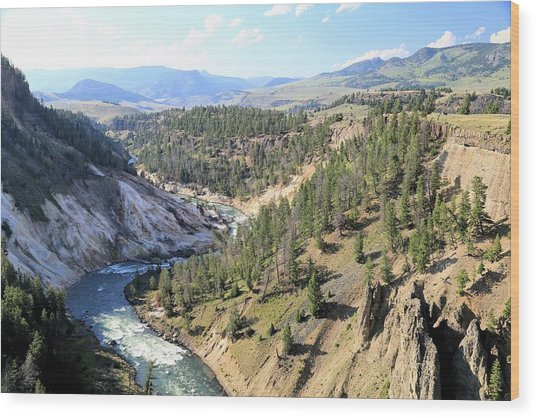 Calcite Springs Along The Bank Of The Yellowstone River Wood Print