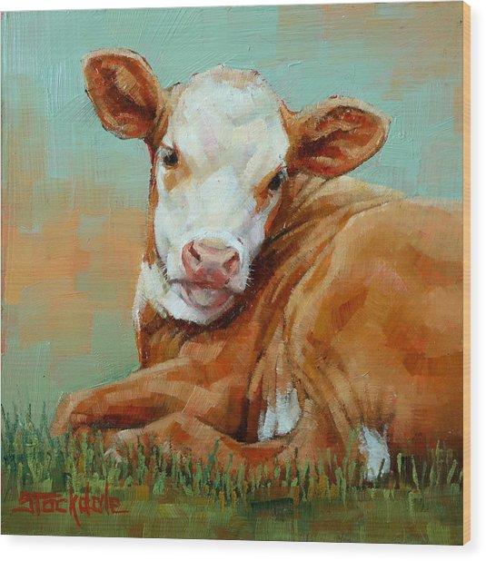 Calf Resting Wood Print