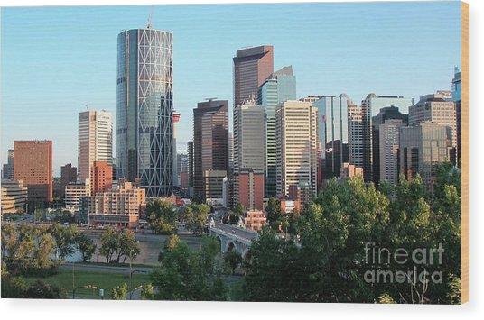 Calgary 2 Wood Print