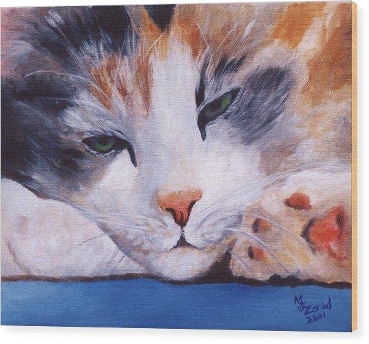 Calico Cat Power Nap Series Wood Print by Mary Jo Zorad
