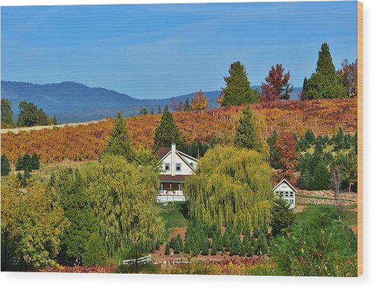 California Apple Hill Wood Print