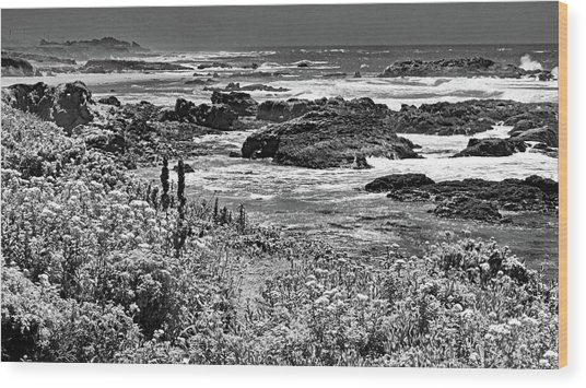 California Coast No. 9-2 Wood Print
