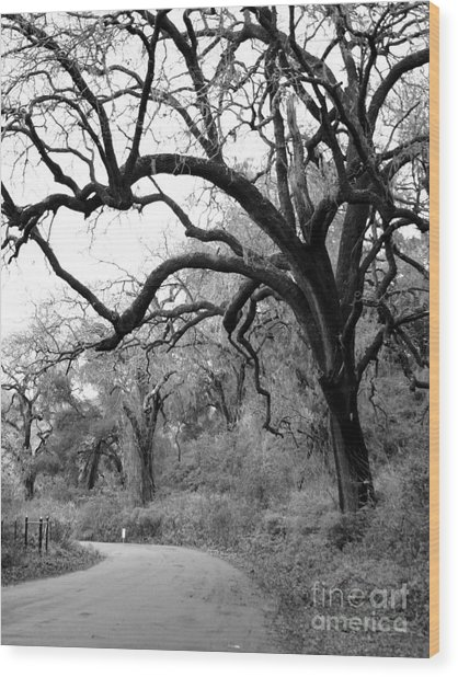 California Country Road Wood Print