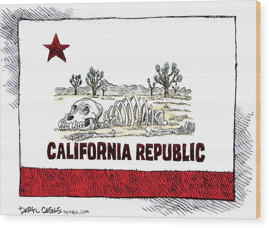 California Drought Wood Print