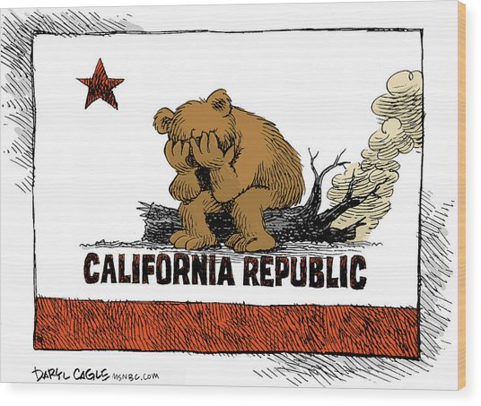 California Fire Bear Grieves Wood Print