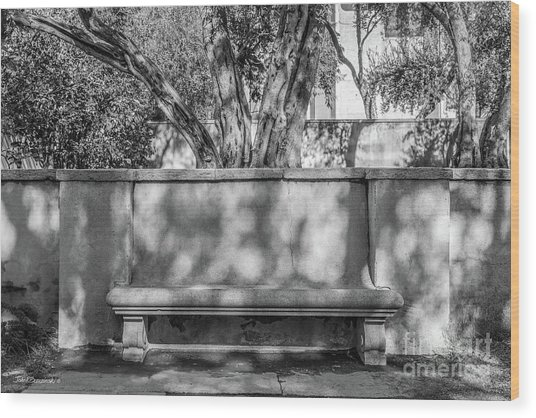California Institute Of Technology Bench Wood Print by University Icons