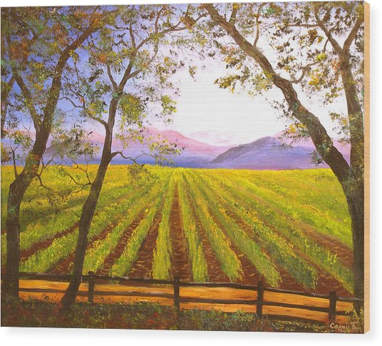 California Napa Valley Vineyard Wood Print by Connie Tom