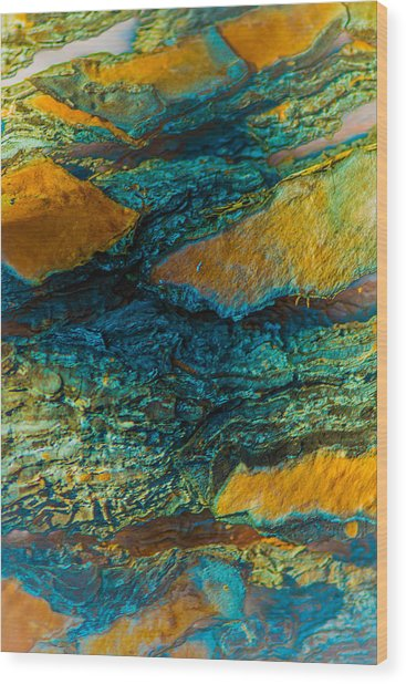 California Pine Bark Abstract Wood Print