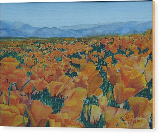 California Poppies Wood Print by Dwight Williams