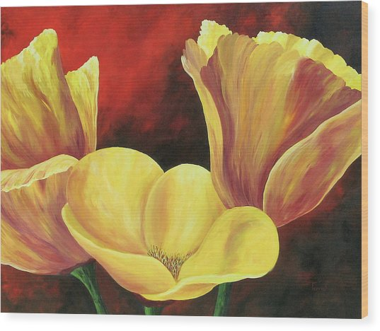California Poppies Iv Wood Print by Torrie Smiley