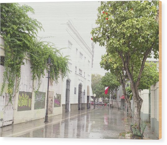 Callejon Amor, Ponce, Puerto Rico Wood Print
