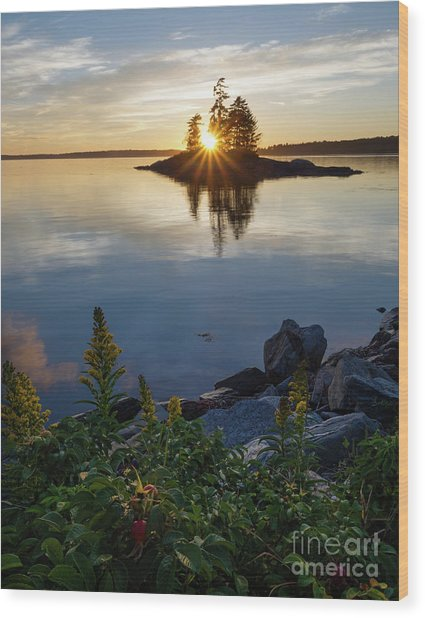 Calm Water At Sunset, Harpswell, Maine -99056-99058 Wood Print