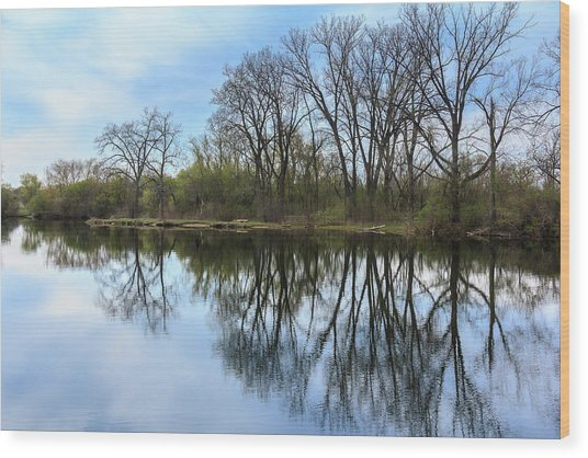 Calm Waters At Wayne Woods Wood Print