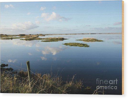 Calm Wetland Wood Print