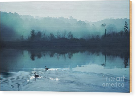Calming Water Wood Print by Gina Signore