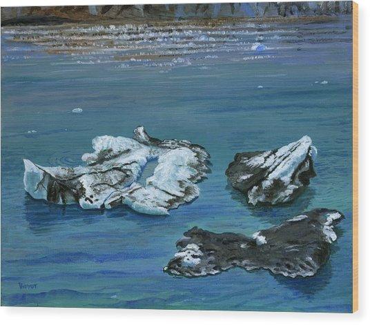 Calved Glaciers Alaska Wood Print by Vidyut Singhal