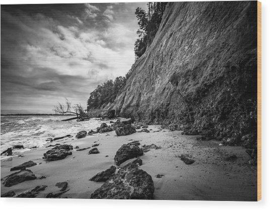 Calvert Cliffs II Wood Print by Robert Davis