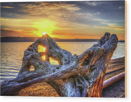 Camano Sunrise Wood Print