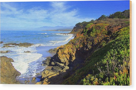 Cambria By The Sea Wood Print