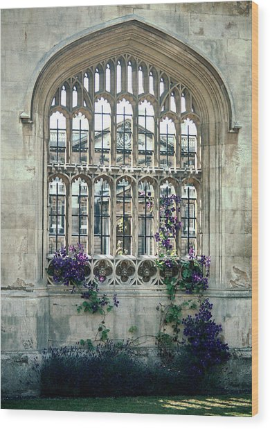 Cambridge Dreams Wood Print