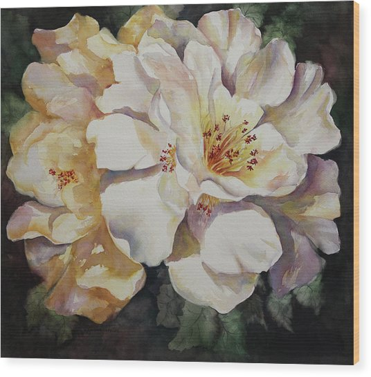 Camellias Golden Glow Wood Print