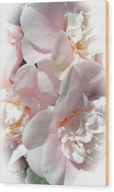 Camellias Softly Wood Print