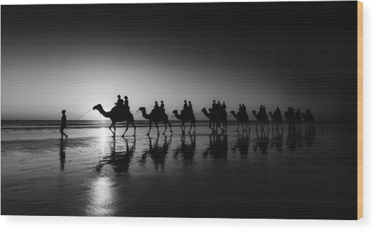 Camels On The Beach Wood Print