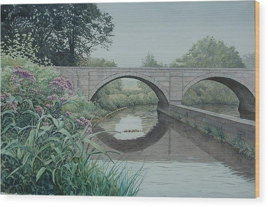 Camillus Canal Wood Print by Stephen Bluto
