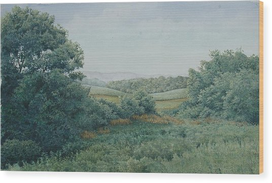 Camillus Field Wood Print by Stephen Bluto