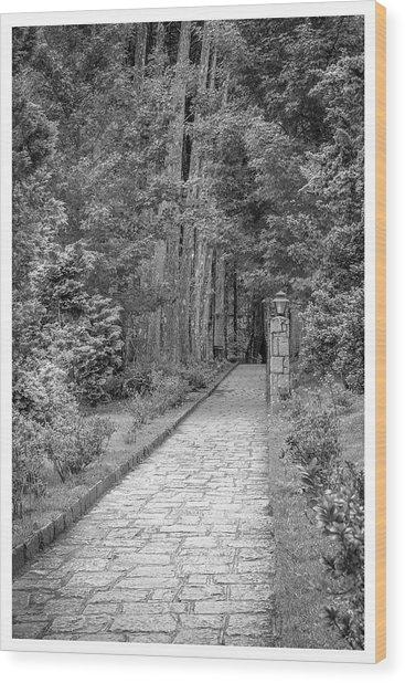 Caminho-mosteiro Das Monjas Beneditinas-campos Do Jordao-sp Wood Print
