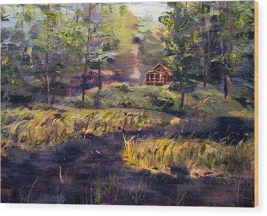 Camp At Efner Lake Brook Wood Print