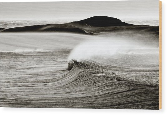 Camps Bay Wave Wood Print by Tim Booth