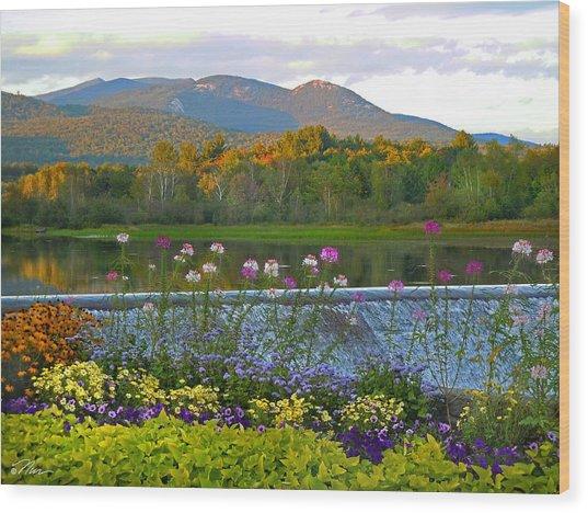 Campton Pond Campton New Hampshire Wood Print