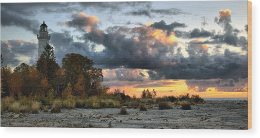 Cana Island At Dawn Wood Print