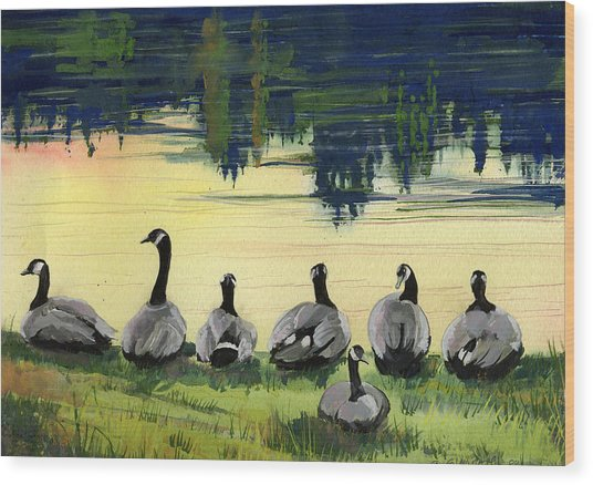Canada Geese Wood Print