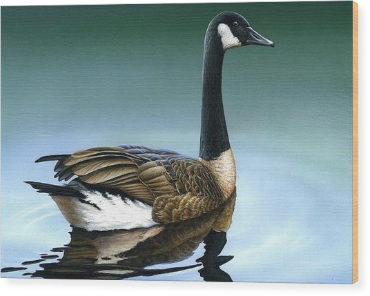 Canada Goose II Wood Print