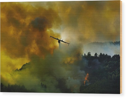 Canadair Aircraft In Action - Fighting For The Salvation Of The Forest. Wood Print