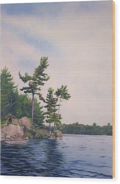 Canadian Shield Sculpture No. 2 Wood Print by Debbie Homewood